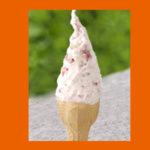 【道の駅もてぎ】日本で一番美味しい「おとめミルク」ジェラート【ホンマでっかTV】