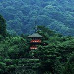 【初詣】御利益アップ!お寺の正しい参拝方法はどうしたらいい!?【ジョブチューン】