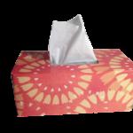 【ソレダメ】トビウオポーズでスッキリ解消!鼻づまりを簡単に直す方法とは