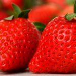 【マツコの知らない世界】厳選オススメフルーツは!マツコ絶賛の苺「古都華」・もんげーばなな・紅はっさくなどの取り寄せ方法