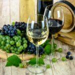 神の雫原作者がオススメする日本ワインの凄さがわかる7本にマツコ大絶賛!コンテストで最高賞のワインの取り寄せ方法【マツコの知らない世界】