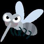 蚊に刺されやすいのは足の菌の多さが原因!?蚊の研究を独自でしている田上君が発見したこととは【マツコの知らない世界】