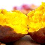 痩せられるかも?太らない正しい焼き芋の食べ方は冷まして食べる?さつまいもは脂肪排出など肥満対策の最強食材だった!【今でしょ!講座】