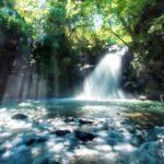 女性にお勧め楽して見られる桜滝・インスタ映えの鍋ヶ滝など女性にお勧めの滝3選!マツコもはまる最高の癒しパワースポットの滝とは【マツコの知らない世界】