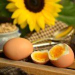 家庭で簡単に美味しいゆで卵の作り方とは!?スーパーの卵が殻もむきやすい絶品最強に【マツコの知らない世界】