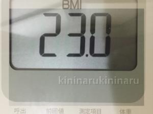 体幹リセットダイエットリベンジ1日目BMI