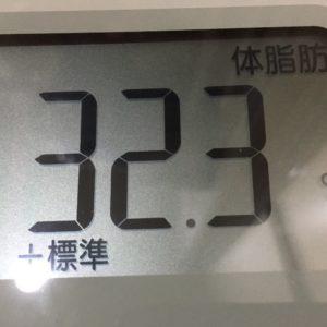 体幹リセットダイエット5日目の体脂肪