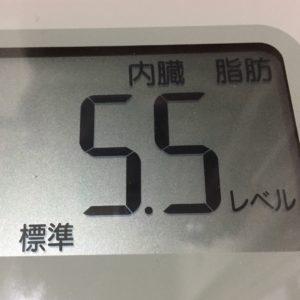 体幹リセットダイエット7日目の内臓脂肪