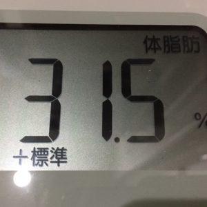 体幹リセットダイエット8日目の体脂肪