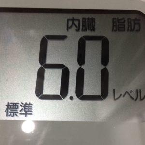 体幹リセットダイエット11日目の内臓脂肪