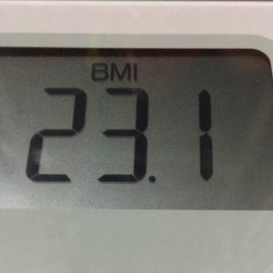 体幹リセットダイエット12日目のBMI