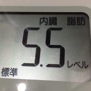 体幹リセットダイエット15日目の内臓脂肪