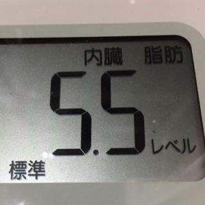 体幹リセットダイエット16日目の内臓脂肪