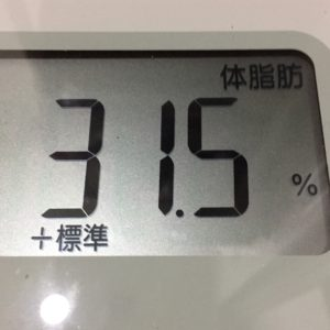 体幹リセットダイエット17日目の体脂肪