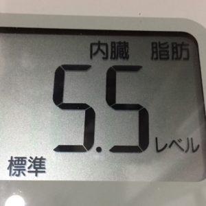 体幹リセットダイエット17日目の内臓脂肪