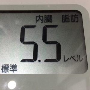体幹リセットダイエット18日目の内臓脂肪
