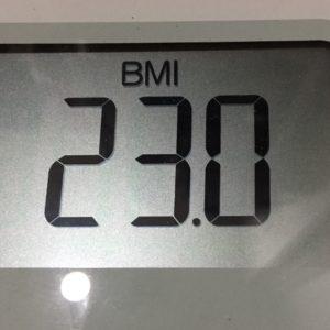 体幹リセットダイエット19日目のBMI