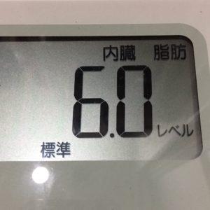 体幹リセットダイエット19日目の内臓脂肪