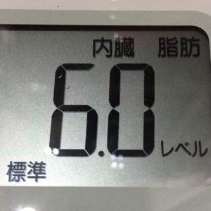 体幹リセットダイエット20日目の内臓脂肪