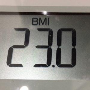 体幹リセットダイエット22日目のBMI