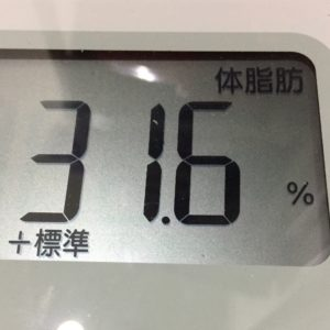 体幹リセットダイエット21日目の体脂肪