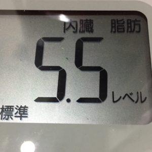 体幹リセットダイエット21日目の内臓脂肪