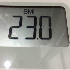 体幹リセットダイエット23日目のBMI