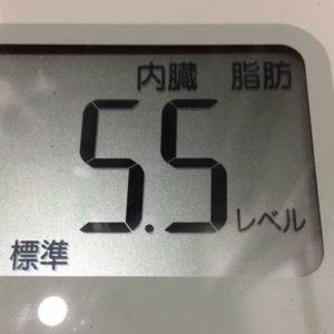 体幹リセットダイエット23日目の内臓脂肪