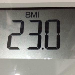 体幹リセットダイエット24日目のBMI
