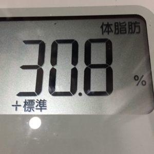 体幹リセットダイエット29日目の体脂肪
