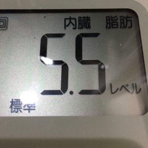 体幹リセットダイエット30日目の内臓脂肪