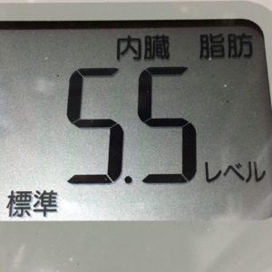 体幹リセットダイエット31日目の内臓脂肪
