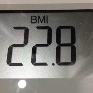 体幹リセットダイエット33日目のBMI