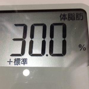体幹リセットダイエット33日目の体脂肪