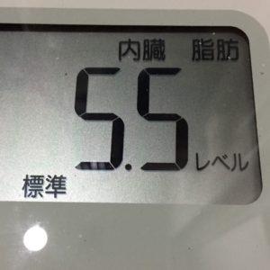 体幹リセットダイエット34日目の内臓脂肪