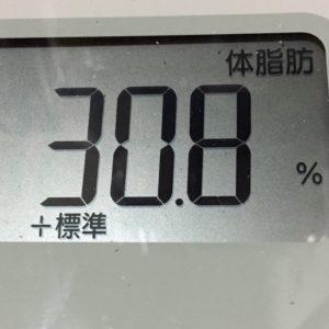 体幹リセットダイエット35日目の体脂肪