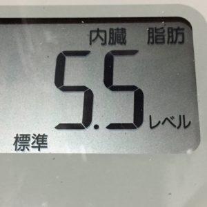 体幹リセットダイエット35日目の内臓脂肪