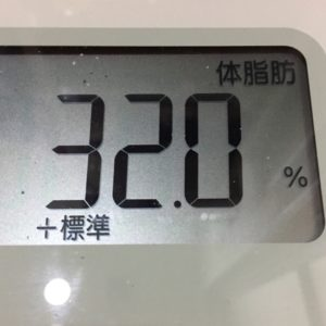 体幹リセットダイエット36日目の体脂肪