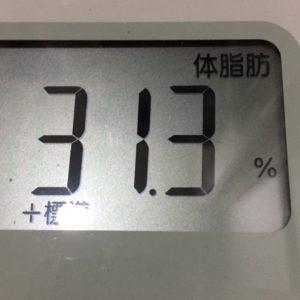 体幹リセットダイエット37日目の体脂肪
