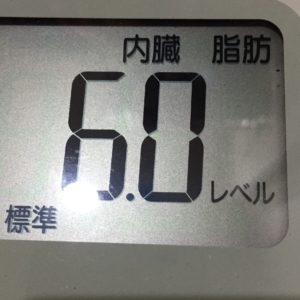 体幹リセットダイエット38日目の内臓脂肪