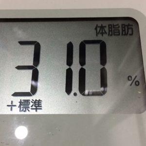 体幹リセットダイエット39日目の体脂肪