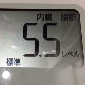 体幹リセットダイエット39日目の内臓脂肪