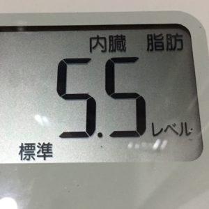 体幹リセットダイエット40日目の内臓脂肪