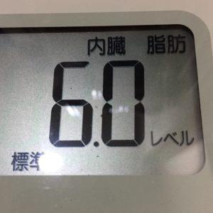 体幹リセットダイエット42日目の内臓脂肪
