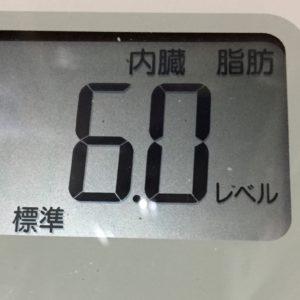 体幹リセットダイエット43日目の内臓脂肪