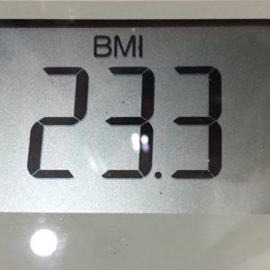 体幹リセットダイエット44日目のBMI