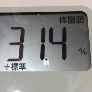 体幹リセットダイエット44日目の体脂肪