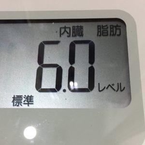 体幹リセットダイエット44日目の内臓脂肪