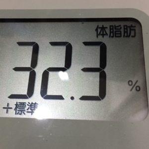 体幹リセットダイエット46日目の体脂肪