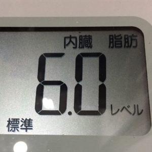 体幹リセットダイエット46日目の内臓脂肪